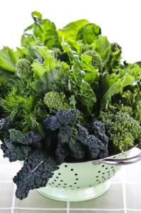 Leafy Greens:  beet greens, collards, nettles, kale, spinach, Swiss chard, dandelion, arugula, purslane